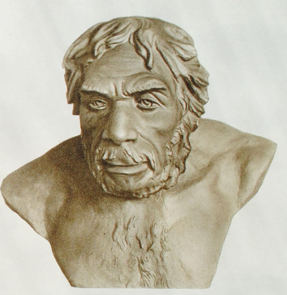 Неандерталец. Реконструкция М.М. Герасимова 1945 г. по черепу из Ля-Шапелля (Франция).